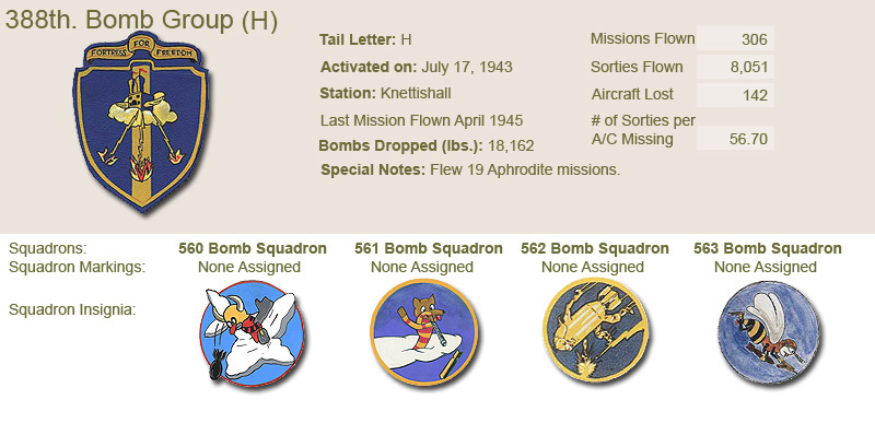 388th Bomb Group and Unit Insignias